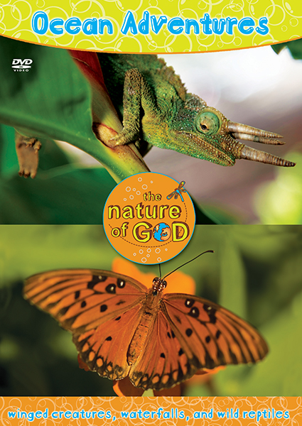 The Nature of God: Ocean Adventures, Vol. 3 - Winged Creatures, Waterfalls, And Wild Reptiles